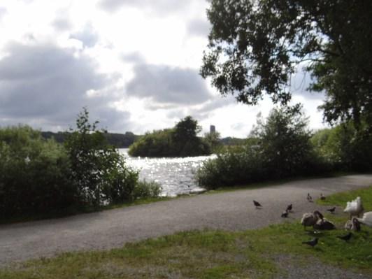 Mosvangen lake, the most popular recreational area for people in Stavanger. Photos by:Carmen Cristina Carpio Tobar / Kjell Anders Pettersen