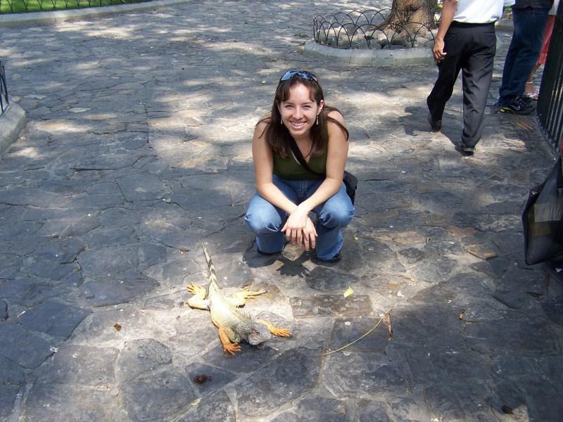 Land iguanas at Parque Bolivar/Seminario