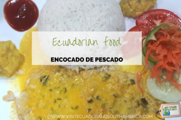 ecuadorian-food-encocado-de-pescado