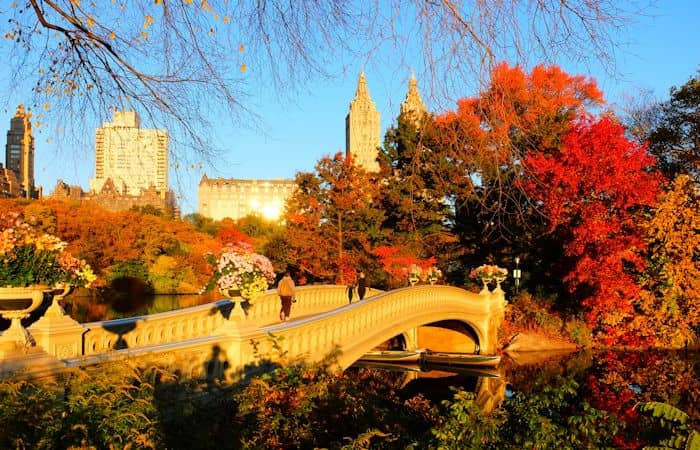 Central Park In Fall Wallpaper Clima Em Nova York Visitenovayork Com Br