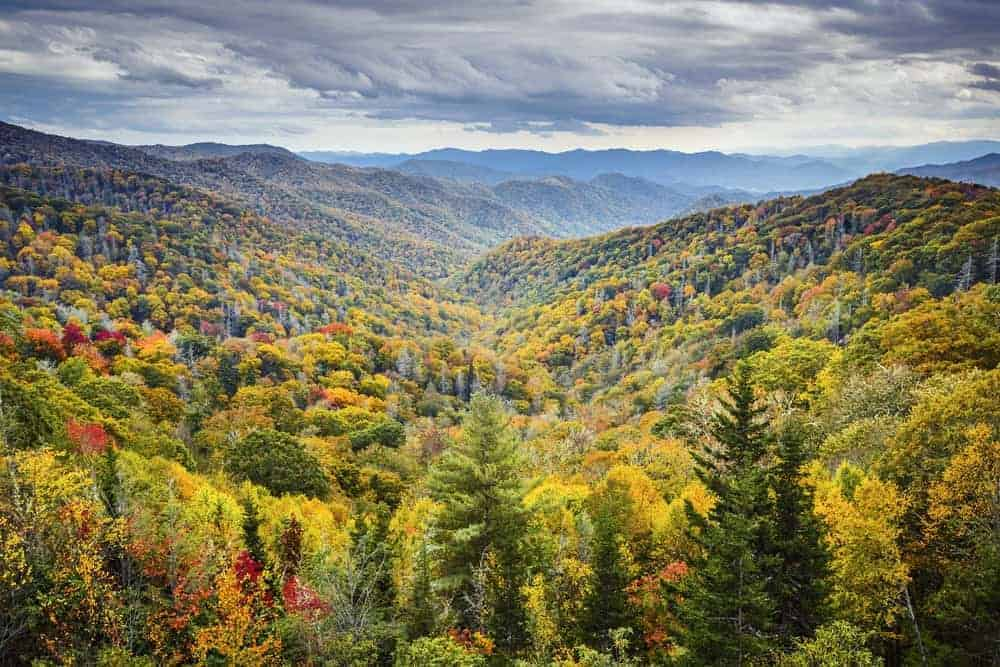Smoky Mountains Fall Wallpaper 4 Reasons To Choose Cabins In Wears Valley Tn For Your