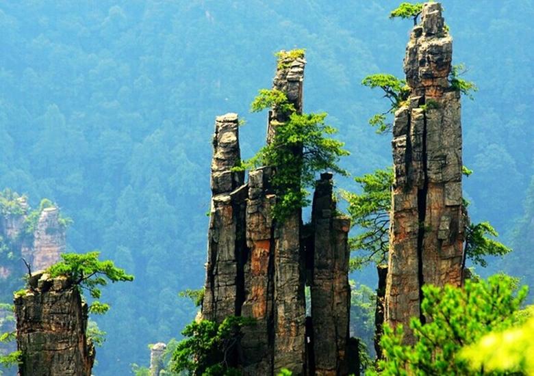 Cherry Blossom Wallpaper Hd Tianzi Mountain Zhangjiajie Tianzi Mountain Nature Reserve