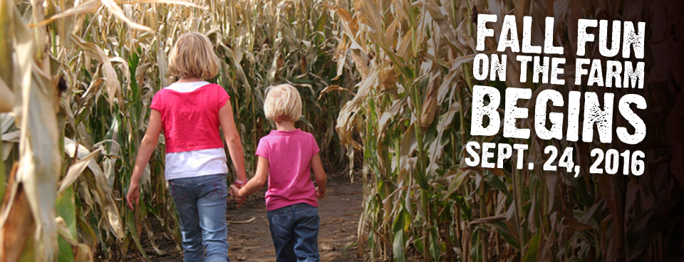 Fall Fun on the Farm - Patterson Farm Market and Tours