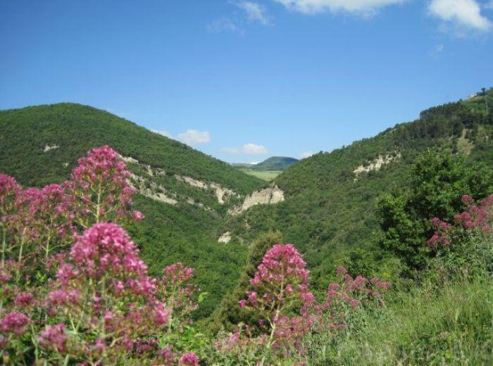 Vallone Caccavone