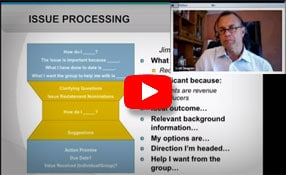 Vistage Issue Processing