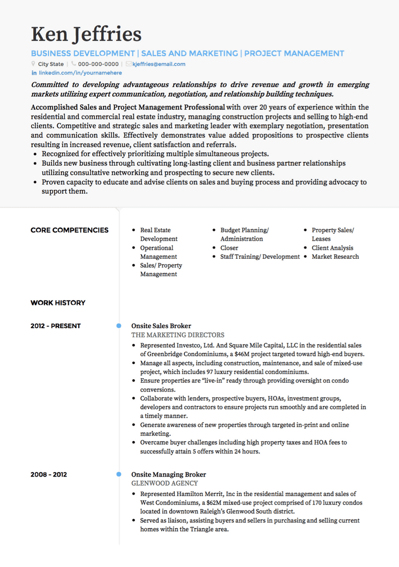 resume profile examples project manager