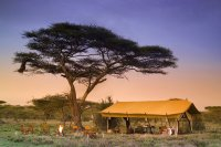 Serengeti Under Canvas, Tanzania - Reviews, Pictures ...