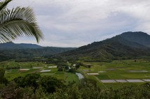 Landschaft: Hawaii