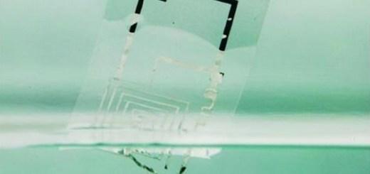 materiali_elettronici_biodegradabili