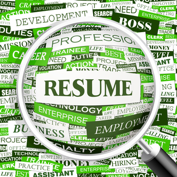 Resume Writing Services Seattle Wa Resume Writing Services Resume Samples  Basic Resume Writing Services Cv Bio