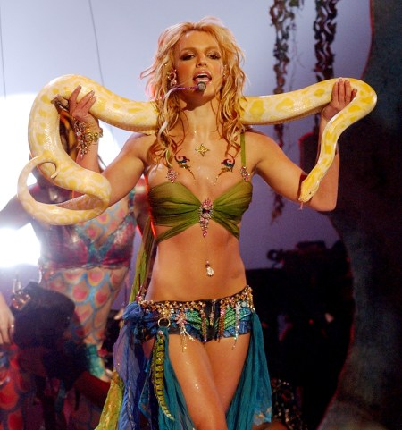 Fact File Britney Spears