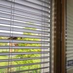 particolare finestra aperta