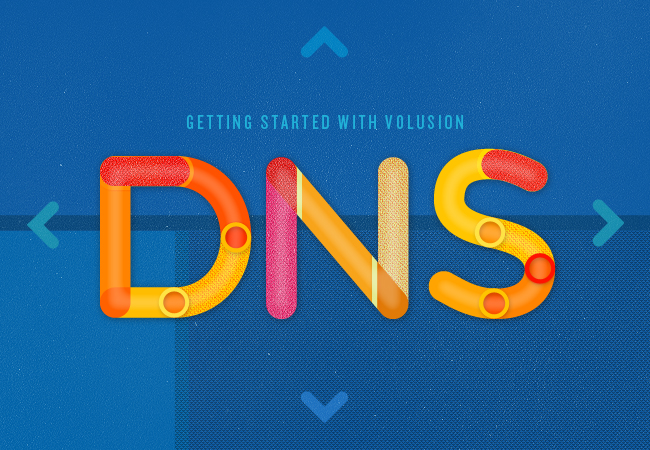 Getting Started with Volusion Setting up Your DNS