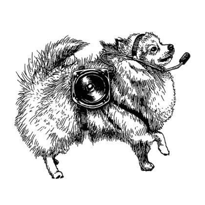 Scientific Pomeranian