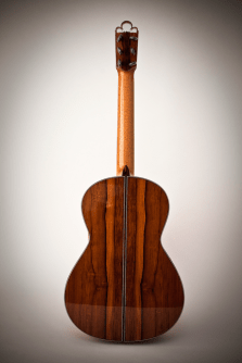 Experimental Classical Guitar, Back View