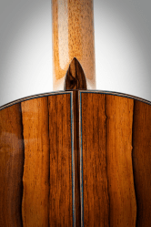Experimental Classical Guitar, Heel & Backstrip Detail