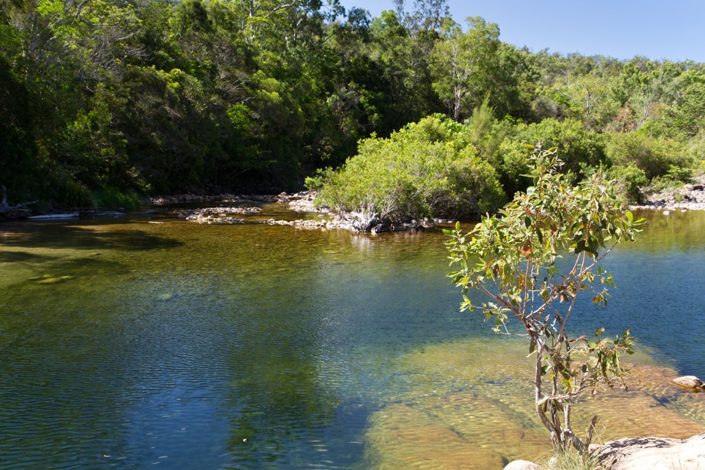 big-crystal-creek-paluma-range