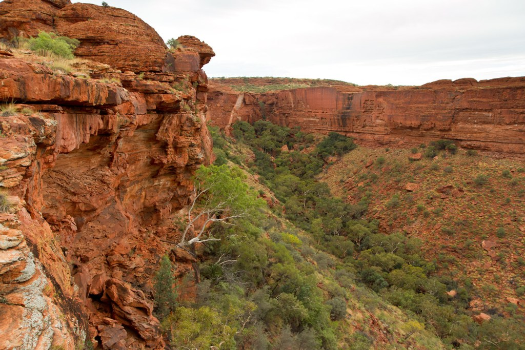 kings-canyon-rim-walk-3