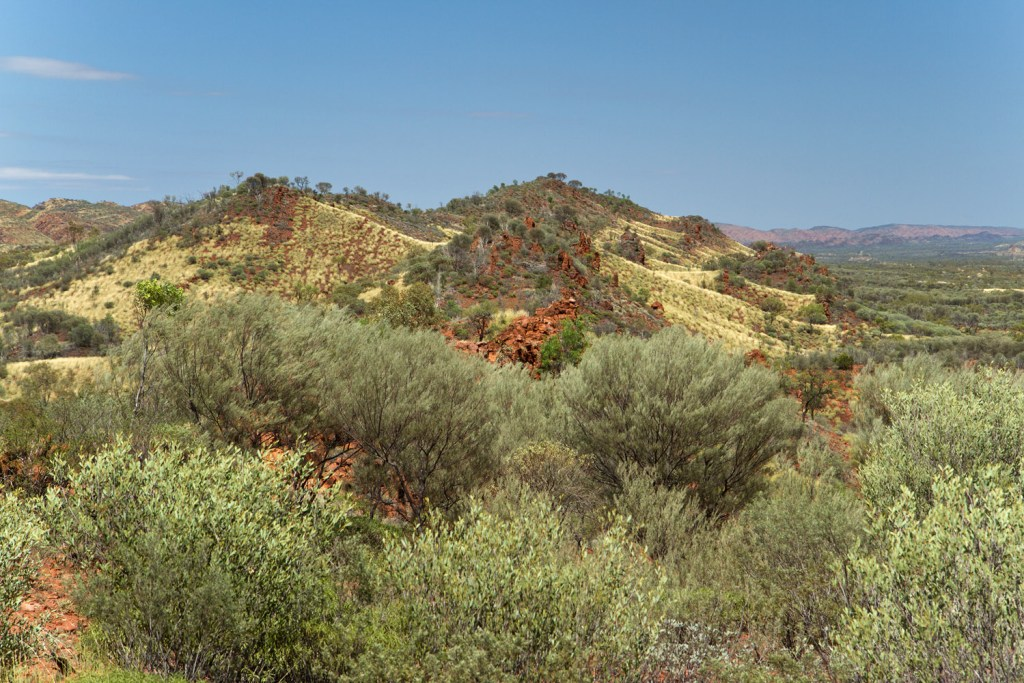 macdonnell-ranges-point-howard-lookout