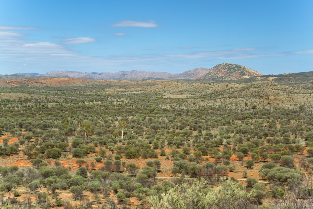macdonnell-ranges-simpson-gap-hill-lookout-1