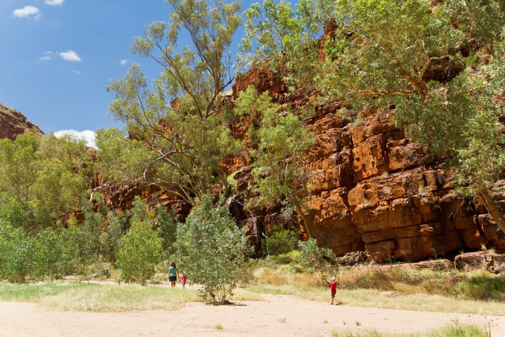 macdonnell-ranges-trephina-gorge-4