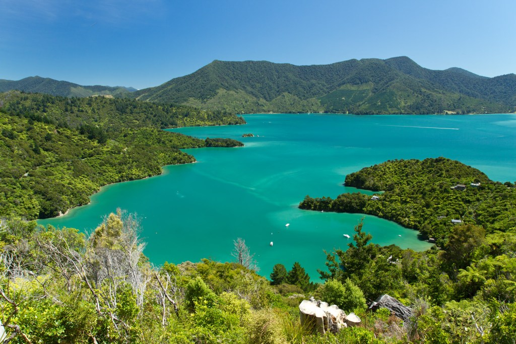 Marlborough Sounds - Onahau Lookout - 4