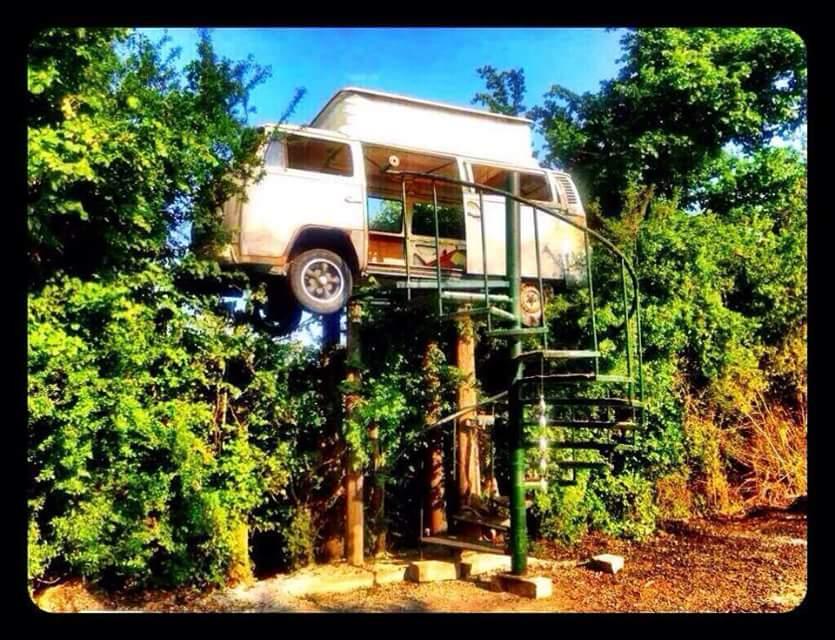 tree-house-bus