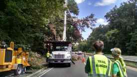 An overhanging dead oak tree resulted in a second truck joining us.