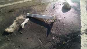 Broken flexpost