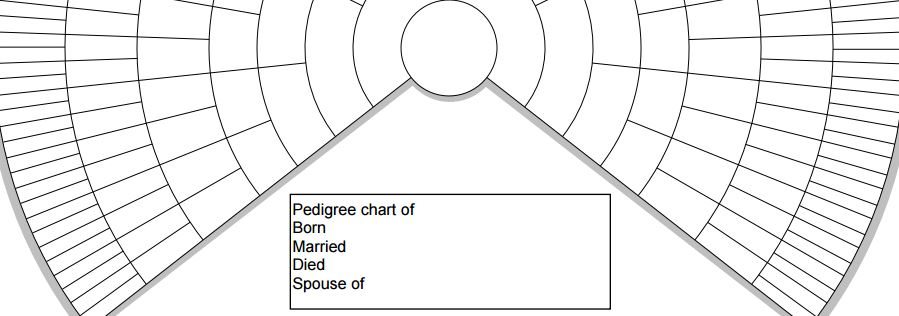 FREE family history charts Free family history forms and logs