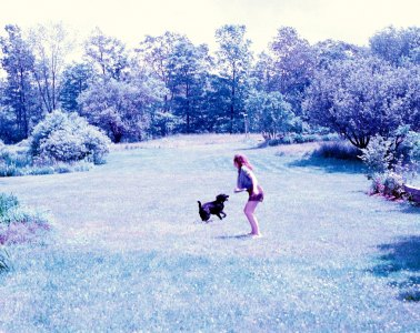 photo of girl throwing frisbee for dog