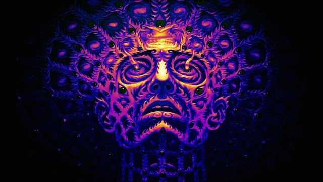 3d Door Wallpaper Does Dmt Play A Role In The Expansion Of Consciousness And