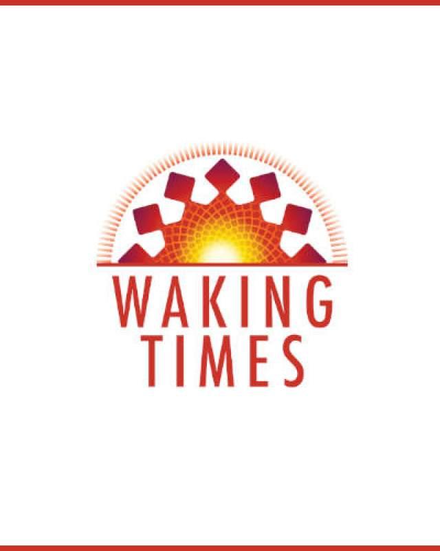 Cannabis Oil Unveiled Cannabinoid-education