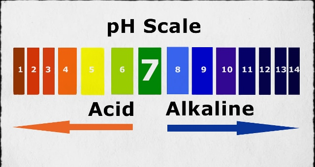 pH Chart of Alkaline and Acidic Foods - ph chart