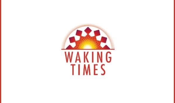 Nicaruagua Bricke Press 1