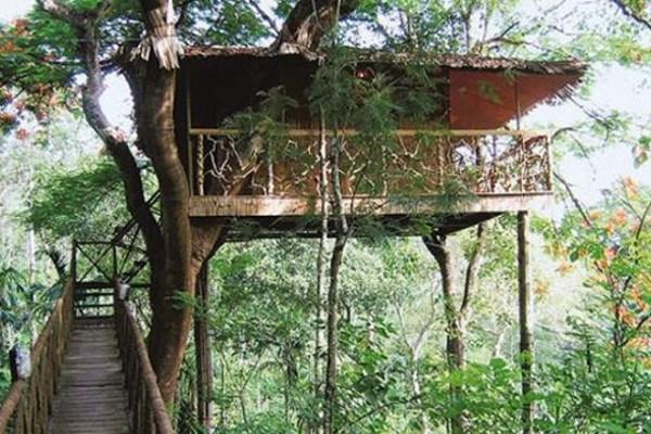 Tranquil-Resort-Plantation-Hideaway