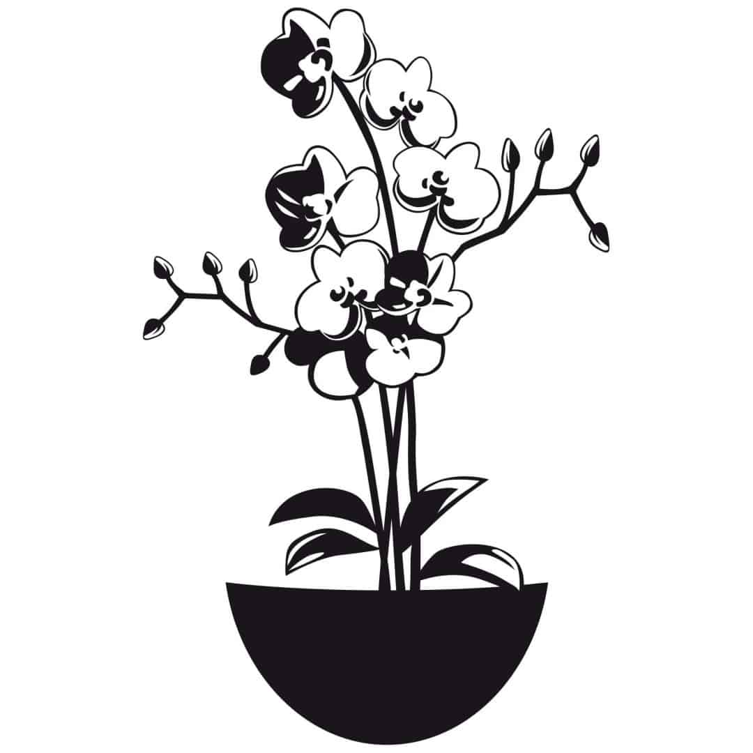Orchid 2 Wall sticker