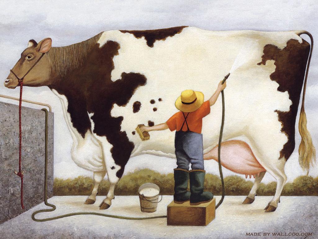 Animal Photo Wallpaper 桌布天堂 奶牛農場 Lowell Herrero繪畫作品9