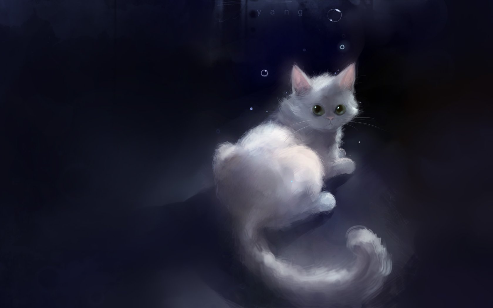 White Cute Cats Wallpapers Heart Touching Painting Beautiful Illustration Of Kittens
