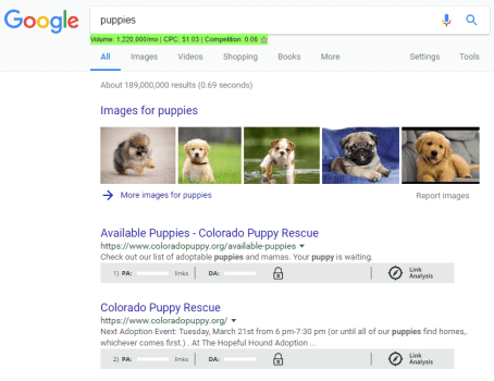 Puppies search in Google to find competition.