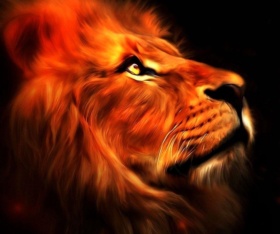 Love Animated Wallpaper For Mobile Red Lion Wallpaper