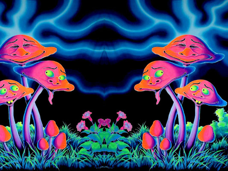 3d Mushroom Garden Wallpaper Download Psychedelic Mushroom Wallpaper Free Hd Backgrounds Images
