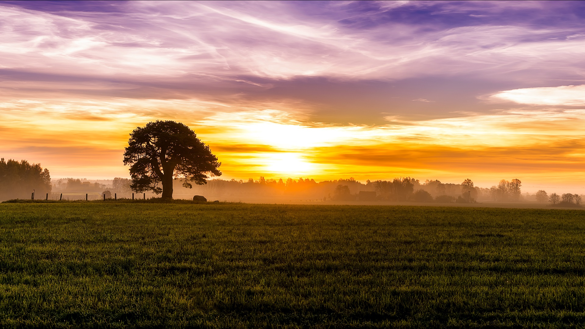Cute Wallpapers For Girls In The Fall Morning Dawn Fog Sunrise Sky Clouds Fields Meadow
