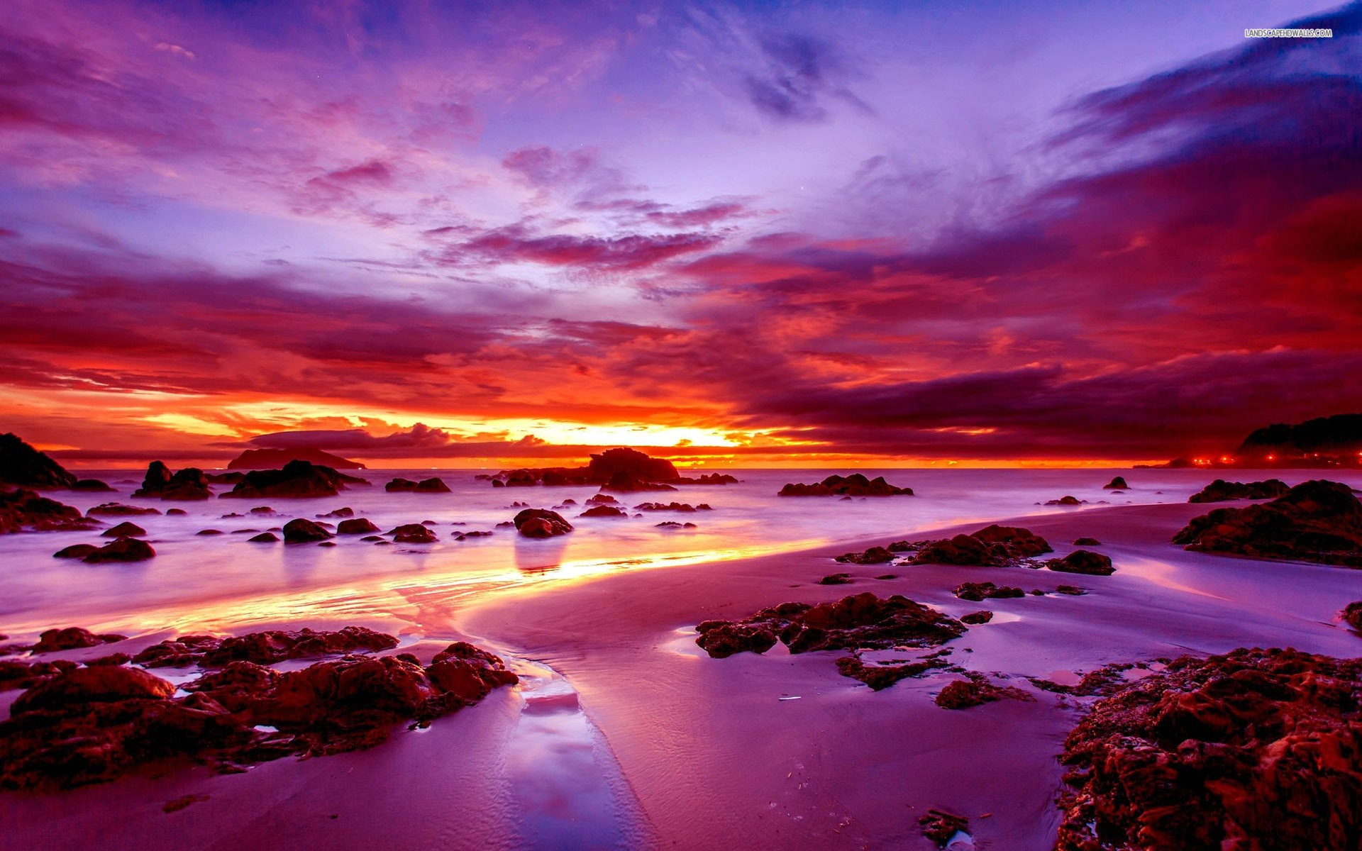 3d Purple Wallpaper For Tablet Purple Sunset On Rocky Beach Wallpaper Nature And