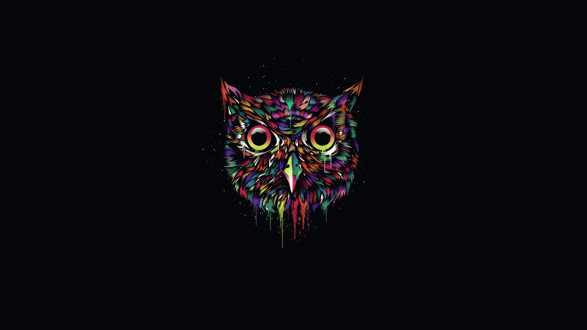 Beautiful Anime Girl Fantasy Forest Wallpaper Colorful Owl Creative Design Black Background Wallpaper