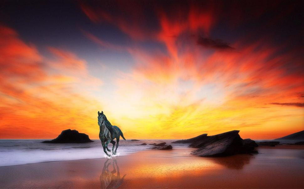 3d Moving Wallpapers For Mobile Free Download Horse At Sunrise Wallpaper Nature And Landscape