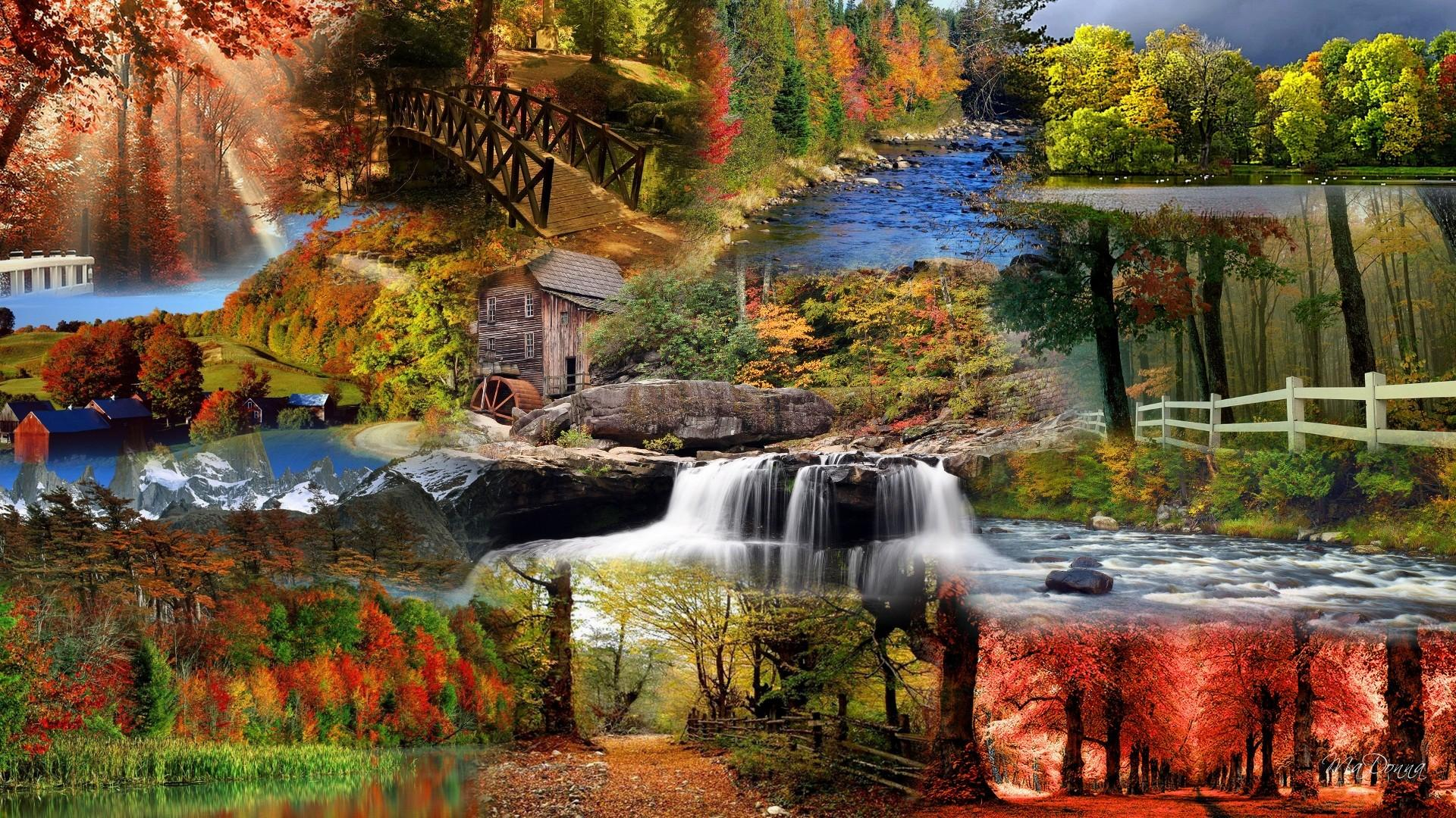 Fall Cabin The Woods Wallpaper Autumn Glory Wallpaper Nature And Landscape Wallpaper