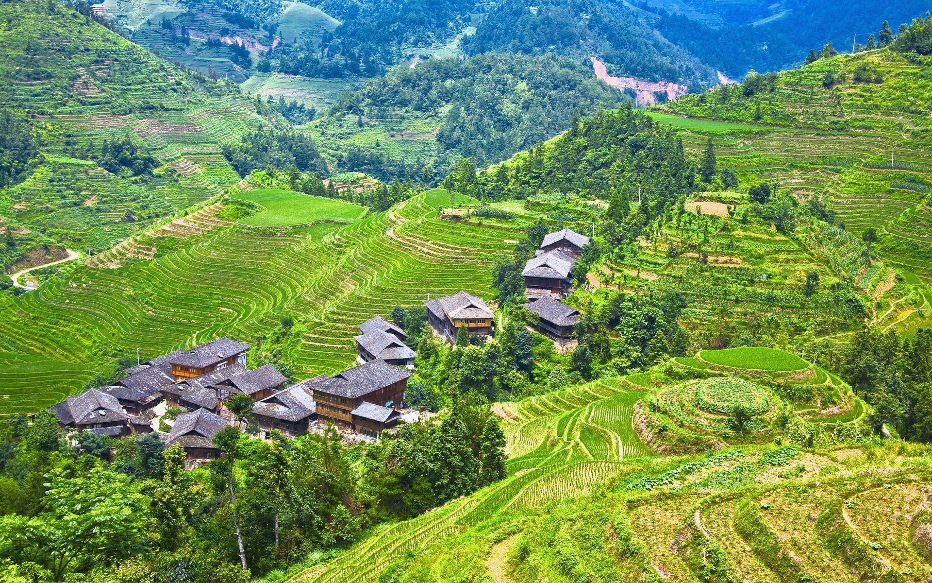 3d Wallpaper Made In China Longji Terraces Rice Fields Guilin China Wallpaper