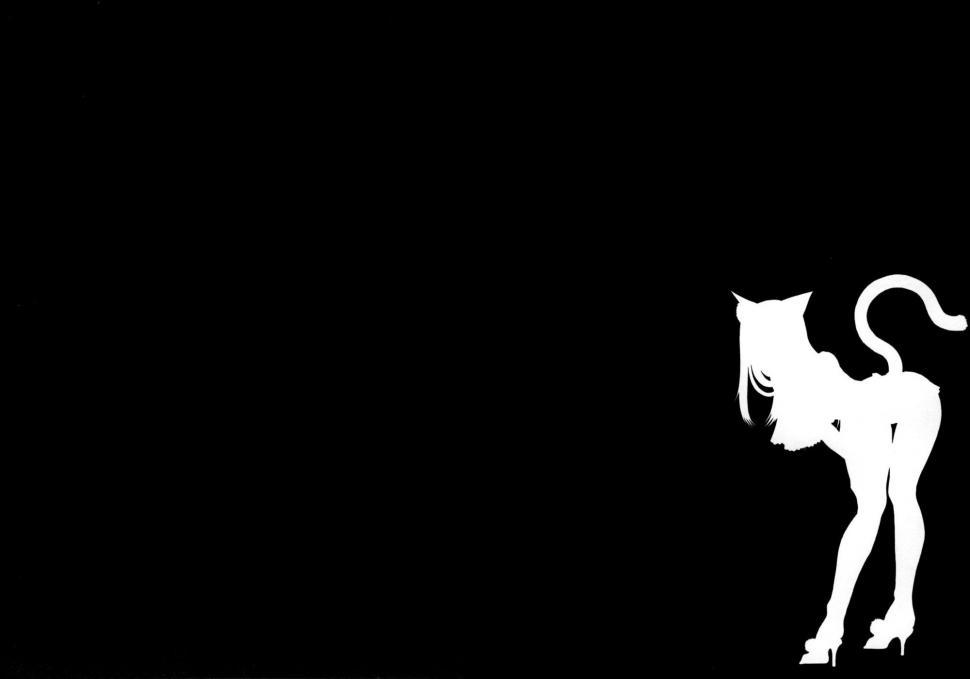 3d Cisco 2016 Hd Wallpaper Silhouette Cat Girls Nekomimi Super Hero Black And