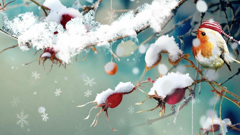 Free Fall Hp Widescreen Wallpapers Sweet Winter Bird Wallpaper Nature And Landscape